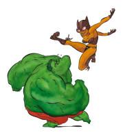catwoman vs hulk (encres de couleur)